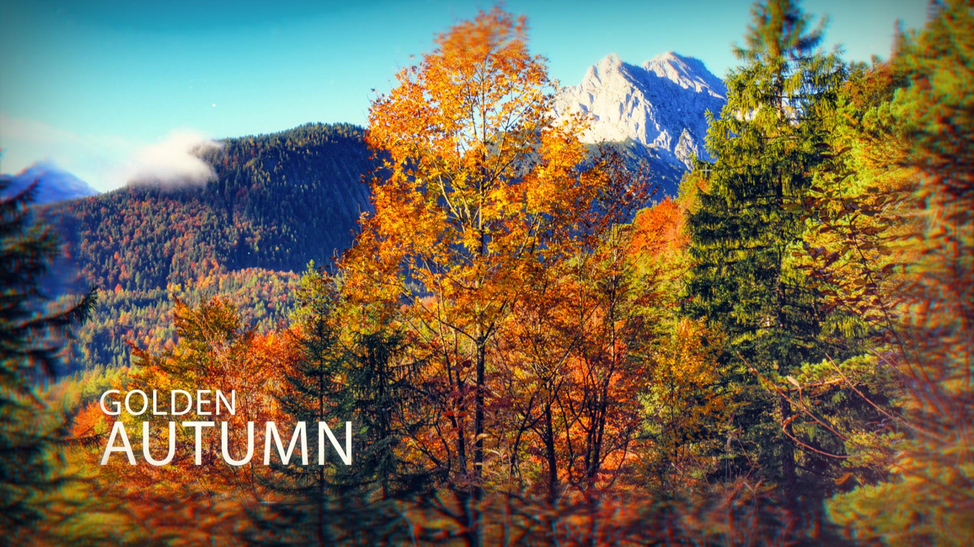 Golden Autumn Videopreview