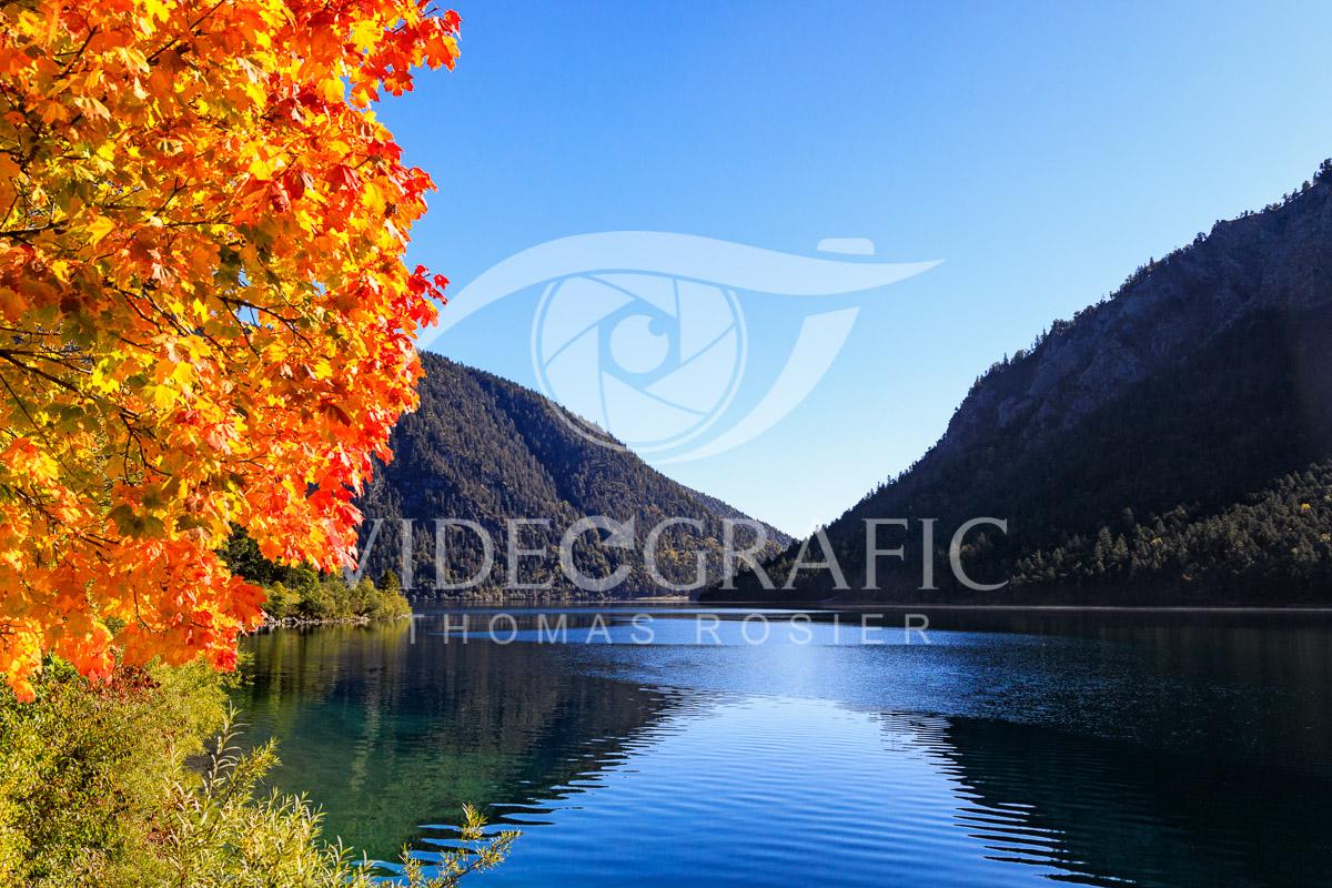 Golden-Autumn-015.jpg