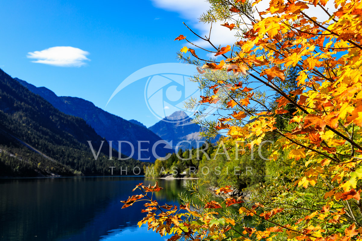 Golden-Autumn-016.jpg